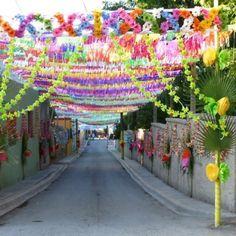 Tradicions of a Magic Town. Parras, Coahuila. Mexico.