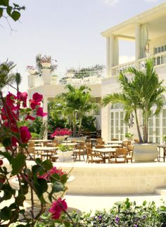 Regent Palms in Providenciales Island, Turks and Caicos