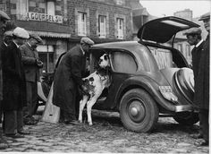 We look back on 80 years of the Citroën Traction Avant Citroen Traction, Traction Avant, Citroen Car, Antique Cars, Monster Trucks, Bike, Black And White, Vehicles, Human Nature