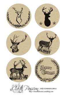 Avent 2014 Cote Passion -Deer- Christmas- Free printable- Tags