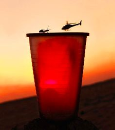 Interesting Photo of the Day: Ant vs. Helicopter - http://thedreamwithinpictures.com/blog/interesting-photo-of-the-day-ant-vs-helicopter
