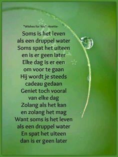 Soms is het leven als een druppel water