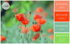 #F98866 petal #FF420E poppy #80BD9E stem #89DA59 spring green #90AFC5 mist #336B87 stone #2A3132 shadow #763626 autumn foliage #46211A crevice #693D3D cloud shadow #BA5536 desert #A43820 red clay #...