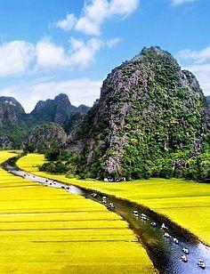 ✯ Cuc Phuong National Park - Vietnam