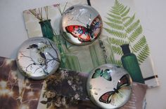 Image of Vintage Glass Butterfly and Bird Paperweights