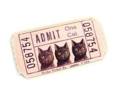 Admit One Cat