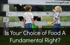 Is Your Choice Of Food A Fundamental Right? This judge said NO. According to him you have NO RIGHT to drinking the milk from your own cow!