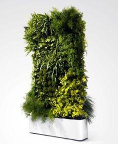 Greenwork Living Wall indoor space greenery