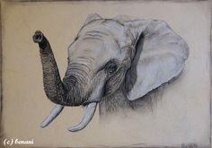 Elefant Animals, Elephants Photos, Animales, Animaux, Animal, Animais
