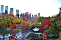 10 gorgeous photos of Central Park in the fall