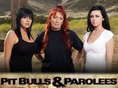 pitbulls and parolees - Google Search