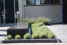 Weelde van water - BuitenZin - Tuinontwerp- en adviesbureau in Twente ontwerpt tuinen voor particulieren en bedrijven.
