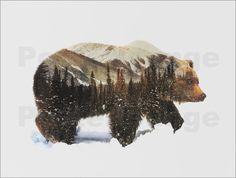 Poster Arktischer Grizzlybär
