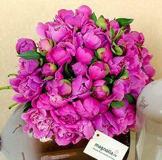 Buchet cu bujori roz- cyclam. Pink peony bouquet