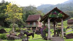 Adobe House, Cabin, House Styles, Youtube, Film Director, Urban Planning, Old World, Beautiful Scenery, Places