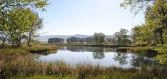 La belleza del Complejo Lagunar del Río Moscas