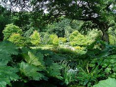 Rosemoor RHS Garden by café_solo, via Flickr