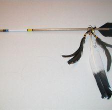 Arrow of Light arrow