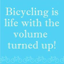 Image result for cycling quotes