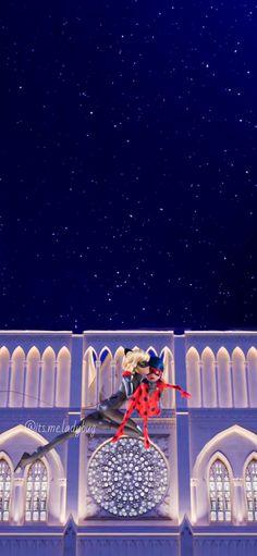 Adrian And Marinette, Marinette And Adrien, Miraculous Ladybug Wallpaper, Miraculous Ladybug Memes, Meraculous Ladybug, Ladybug Comics, Ladybugs Movie, Les Miraculous, Ladybug Und Cat Noir