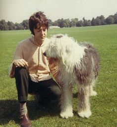 """Paul McCartney and Martha  This is the dog he wrote the song for! I always thought it was about a girl. At last! A song with my name! """"Martha, My Dear""""."""