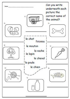 FRENCH MONTHS Activity WORKSHEET,Practice Writing the Months in ...