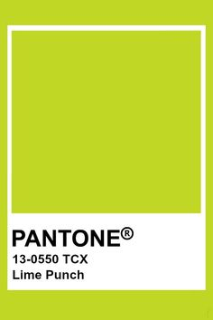 Pantone Lime Punch Lime Sherbert Punch, Lime Punch, Lime Crema Recipe, Lime Cake Recipe, Colour Pallete, Colour Schemes, Lime Jello Shots, Lime Green Nails, Lime Nails
