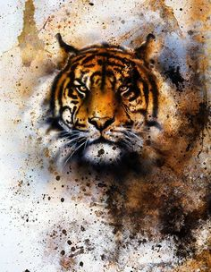 Wall Art Hd Print On Canvas Animal Abstract Tiger Head Oil Painting Modern Decor