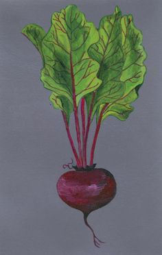 "Garden Art - ""You've Got the Beet"" - Acrylic Painting by Lorraine Skala - Prints and notecards available at lorriskala@aol.com"
