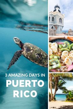This Guide to Puerto Rico will help you plan your time on the island and show you the best things to do and see in just 3 days! Travel Tips Tips Travel Guide Hacks packing tour Puerto Rico Trip, San Juan Puerto Rico, Places To Travel, Travel Destinations, Places To Visit, Cuba, Les Bahamas, El Yunque National Forest, Porto Rico