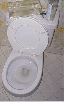 Vinagre! Para un baño limpio y sin mucho alboroto, simplemente verter un par de tazas de vinagre en el baño antes de acostarse, haga buches con un cepillo de baño por la mañana, y al ras. Esta estrategia simple desinfectar el inodoro y eliminar esas manchas de agua dura obstinados también. Por qué esto funciona El ácido acético en vinagre mata virus, gérmenes, bacterias y moho.