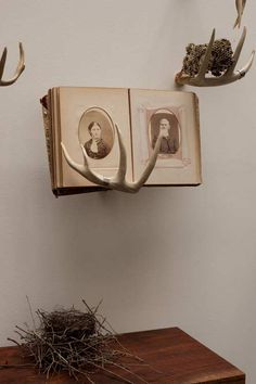 love the idea of an antler displaying a book, especially since you don't have to kill any animals to get one!