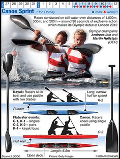 Olympics 2012 in infographics: water sports | Sport | The Guardian