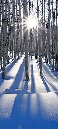 Winter shadows • Peter Lik Fine Art Photography/o. I love sunlit shadows on snow- uniquely blue.