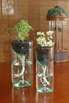 Alten Flaschen - selbst gießende Vase Flasche, feinmaschiges Gitter, Wollfäden, Erde und natürlich eine Pflanze. Die Flasche in zwei Teile schneiden und in die Oberseite das Gitter hineinlegen, sodass später die Erde nicht ins Wasser fällt. Wollfäden an einer Seite zusammenbinden Knoten in das Gitter hängen, damit die Pflanze Wasser bekommt wenn sich die Fäden vollsaugen. Fertig!