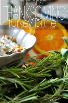 The Best Thanksgiving Turkey Brine | First Home Love Life