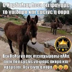 Funny Greek, Beach Photography, Funny Cartoons, Laugh Out Loud, Funny Quotes, Humor, Happy, Animals, Crowns