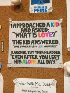 Admirável Mundo: What is Love?