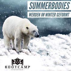 Kein Risiko bei 2x kostenlosem schnuppern! Bist Du dabei? Winterthur, Boot Camp, Trainer, Motivation, Polar Bear, Workout, Instagram, Fitness, Showers