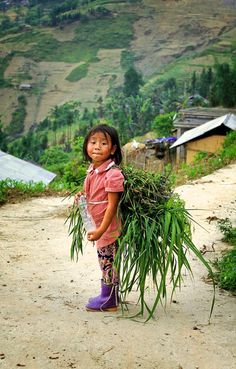 Ra đồng #Travel #VietNam #PaddyField #TerracedPaddy #Minority #Children #Northern Precious Children, Beautiful Children, Kids Around The World, Around The Worlds, Namaste, Laos, Martial, Beautiful Vietnam, Bless The Child