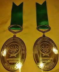 Resultado de imagen para medalla scout -
