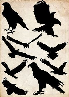 Eagle Silhouette clip art 9 png Clipart Instant by 41Bus on Etsy