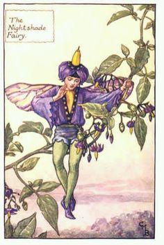 Fairy: The Nightshade Fairy, (CMB) Cicely Mary Barker, 1935