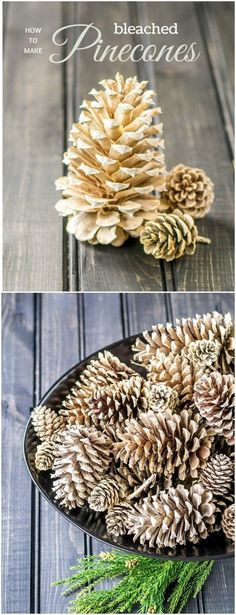 Give the pine cones a softer, weathered look by bleaching them! Great crafts for your seasonal decor! Crafts Festive DIY Pine Cone Crafts for Your Holiday Decoration - For Creative Juice Pine Cone Christmas Tree, Christmas Tree Painting, Christmas Crafts, Xmas, Diy Fest, Pine Cone Art, Painting Pine Cones, Painted Pinecones, Bleach Pinecones