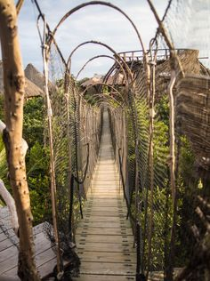 Kin Toh Tree House Nest Restaurant at Azulik Resort Tulum, Mexico View of Jungle Best Places to Eat in Tulum Mexico Quintana Roo Yucatan Places To Travel, Travel Destinations, Places To Visit, Vacation Travel, Italy Vacation, Travel Deals, Cozumel, Tulum Mexico Resorts, Tulum Hotels