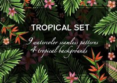 Tropical watercolor patterns. by Mehendra Art on @creativemarket