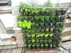 Small vegetables garden for beginners | Garden For Beginners ...