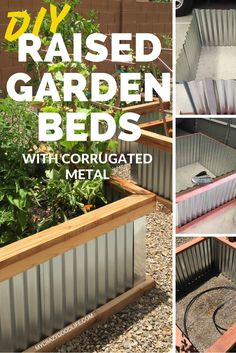 DIY Raised Garden Beds with Corrugated Metal: A few months ago my husband decided to appease my spontaneous idea of a garden and went a step further to build me a few beautiful raised garden beds with (Diy Garden Bed) Raised Bed Garden Design, Building A Raised Garden, Metal Raised Garden Beds, Raised Gardens, Raised Flower Beds, Box Building, Garden Boxes, Garden Planters, Metal Planters