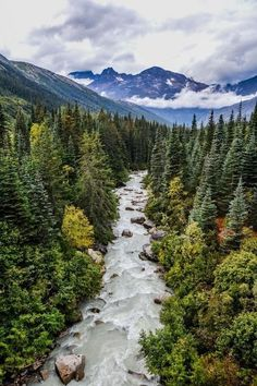 Skagway, Alaska The Effective Pictures We Offer You About Viewing ocean A quality picture can tell you many things. Alaska Travel, Travel Usa, Alaska Trip, Alaska Usa, Visit Alaska, Cruise Travel, Luxury Travel, Places To Travel, Places To See