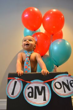 First birthday picture idea- with my trunk from Gammy used in the gender reveal! Dr Seuss Birthday Party, 1 Year Birthday, 1st Birthday Girls, Birthday Ideas, Birthday Bash, Baby Family Pictures, One Year Pictures, Baby Photos, Picture Ideas